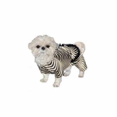 Honden verkleedkleding zebra jasje tip