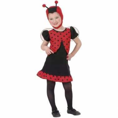 Lieveheersbeestje verkleedkledingje meisjes tip