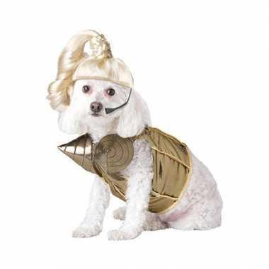 Madonna verkleedkleding honden tip