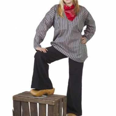 Verkleedkleding  Boeren overhemd streepjes tip