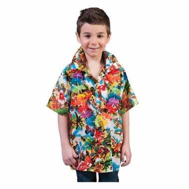 Verkleedkleding  Gekleurde shirt kind tip