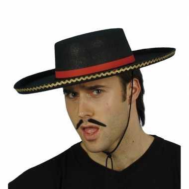 Verkleedkleding  Spaanse traditionele hoed tip