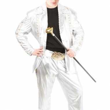 Zilveren carnavalsverkleedkleding kind tip