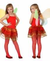 Vlinder verkleedkleding kind